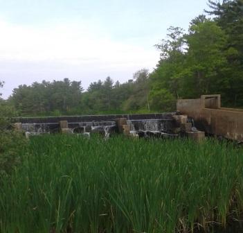 fish ladder at tucker preserve