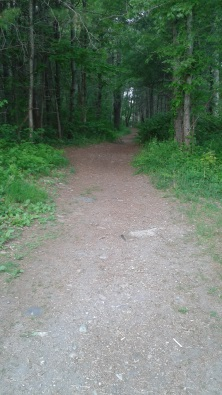 wide hiking trail at tucker preserve