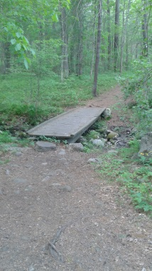 first bridge crossing at tucker preserve