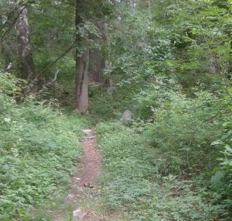 narrow hiking trail connecting side hill rd to the parking lot on route 3A