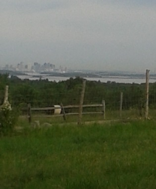 view of Boston and it's harbor from Turkey Hill