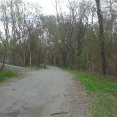 A paved Turkey Hill Lane leading to the unpaved version in Whitney Woods