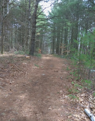 wide hiking trail runs by first of twin ponds