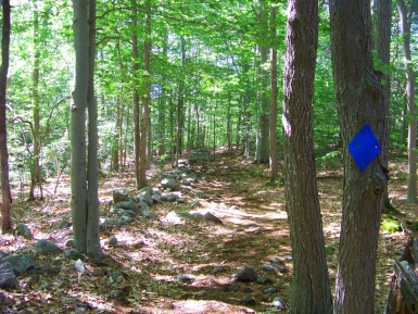 twin ponds trail running along a rock wall