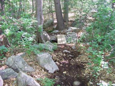 small footbridge on twin ponds trail