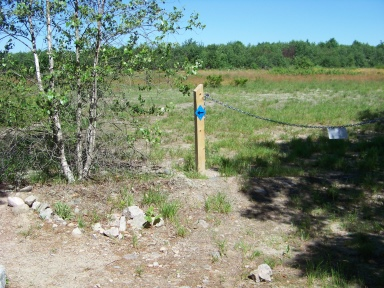 The hiking trail climbs out of the forest and follows a field on Twin Ponds Trail.