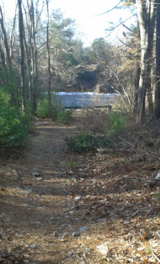 hiking trail out to Maryland St in Marshfield