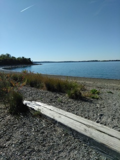 View of beach access from Haviland Memorial
