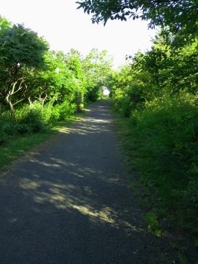Garden like hiking trail