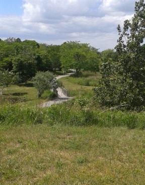 Winding trail over a bridge at Webb Memorial Park