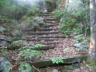 staircase up cliff ledge in weir river woods