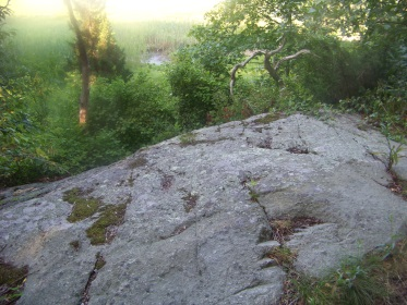 rocky ledge out look in weir woods