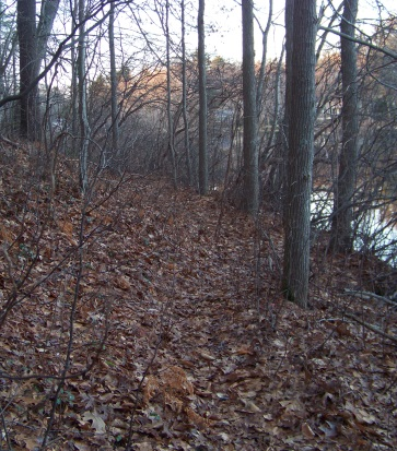 western side of cushing pond trail