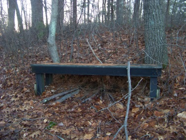 bench after the bridge on western part of cushing woods