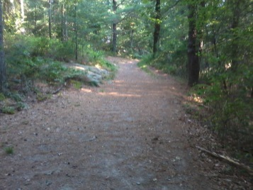 Wheelwright Park hiking trail