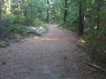 Wheelwright Park hiking trail