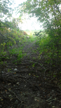 the climb out of the charles ed white recreation area to centennial park in norwell