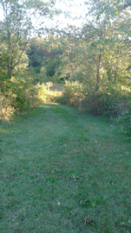 cut grass trail at centennial park in norwell