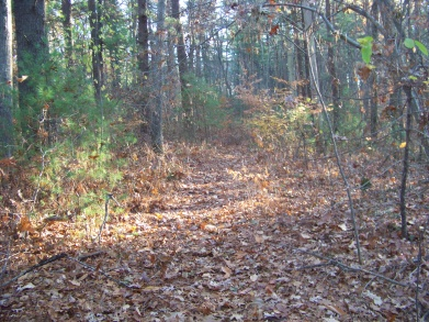 trail across second utility line on whitman hanson trail