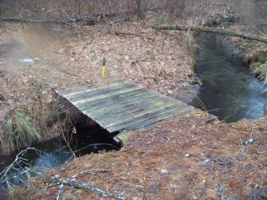 bridge over stream in whiton woods in duxbury