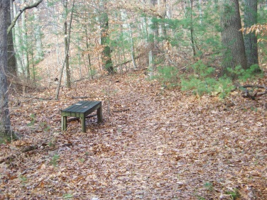 bench at a trail junction at whortleberry hollow in hingham