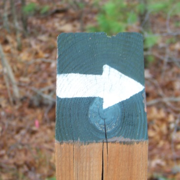 trail marker of whortleberry hollow