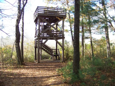 observation tower at edge of marsh in willow brook farm