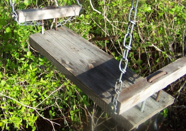 sturdy cable seat on hiking trail of camp wing conservation area