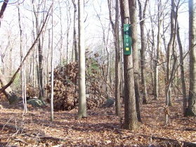 elfin trail blocked by blow downs