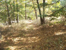 boundary trail in fall