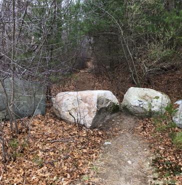 Entering Stump Brook Sanctuary.