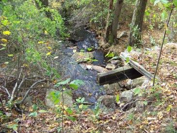 bridge over Beaver Brook on  Around Cleveland Pond Trail