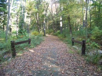 main trail leading into ames nowell state park