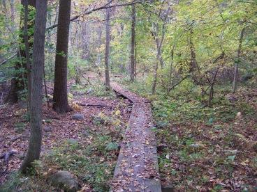 walkway thru wetlands at ames nowell state park
