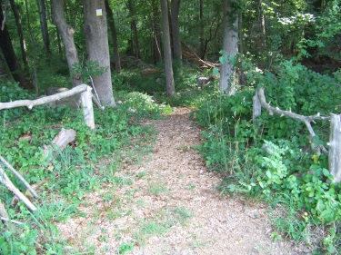 rustic entrance to Litchfield trail