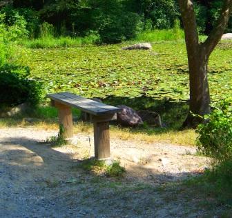 Bench alongside Boundary Pond at Wompatuck State Park.