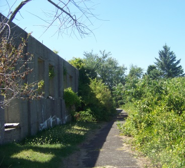 An asphalt hiking trail leading past more building remains on Bumpkin Island.