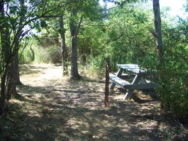 Campsite number one on Bumpkin Island.