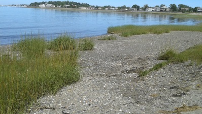 Little beach on Nantasket Rd.