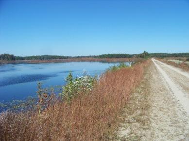 hiking along upper burrage pond