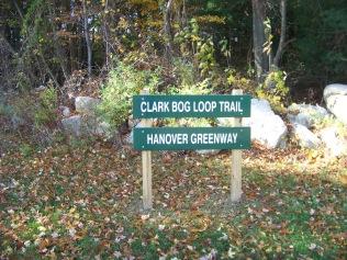 clark bog loop trail head