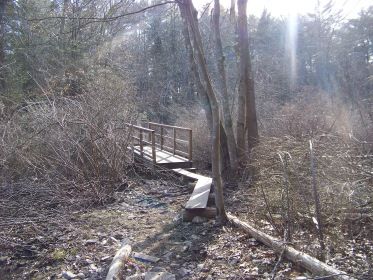 beginning of bridge in colby phillips conservation