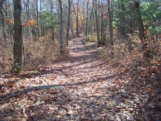 cart path at cranberry pond