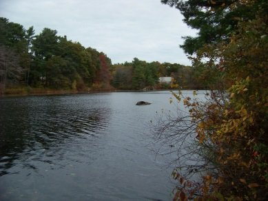view of lower end of cushing pond
