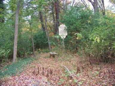 set back mildred cushing woods conservation area