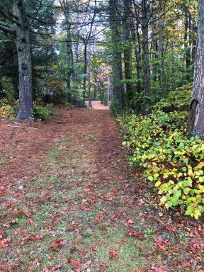 Denham Pond Trails access road