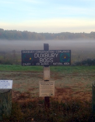Duxbury Bogs Conservation sign at parking lot on East St in Duxbury.