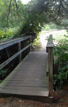Bridge near parking area at Duxbury Bogs