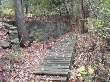 boardwalk on a loop in eel river woods