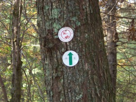 trail markers on french's stream trai